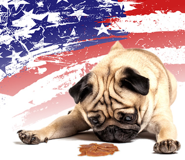 American made jerky treats tied to illness in dogs