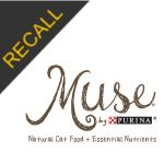 Muse Recall | March 2019